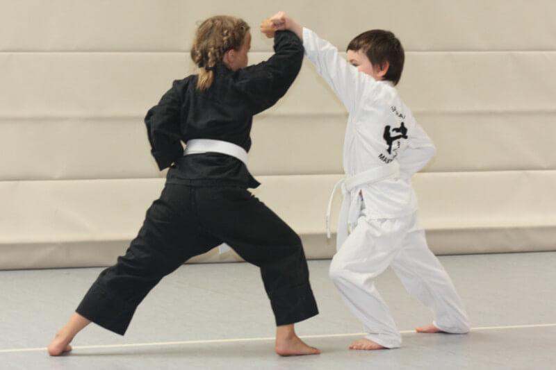 Prüfung Juli 2015 9. Kyu Gohon-Kumite